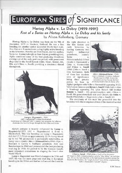 Early German Dobermanns