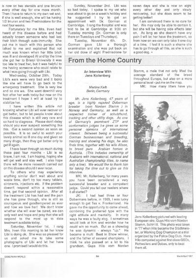Dobermann article Jens Kollenberg
