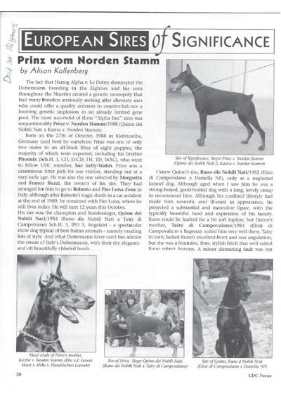 Prinz v Norden Stamm story