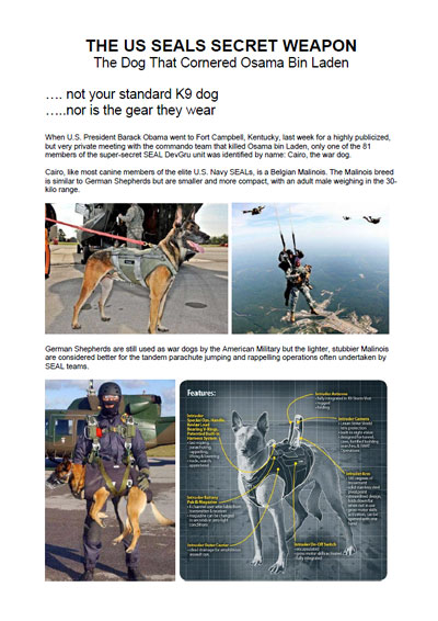 Malinois_police_military_dogs