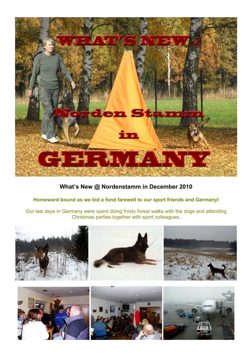 Nordenstamm News 2010-2011