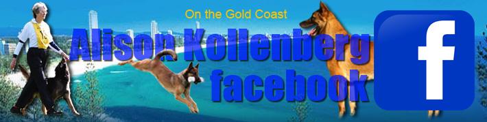 Alison Kollenberg_facebook_logo