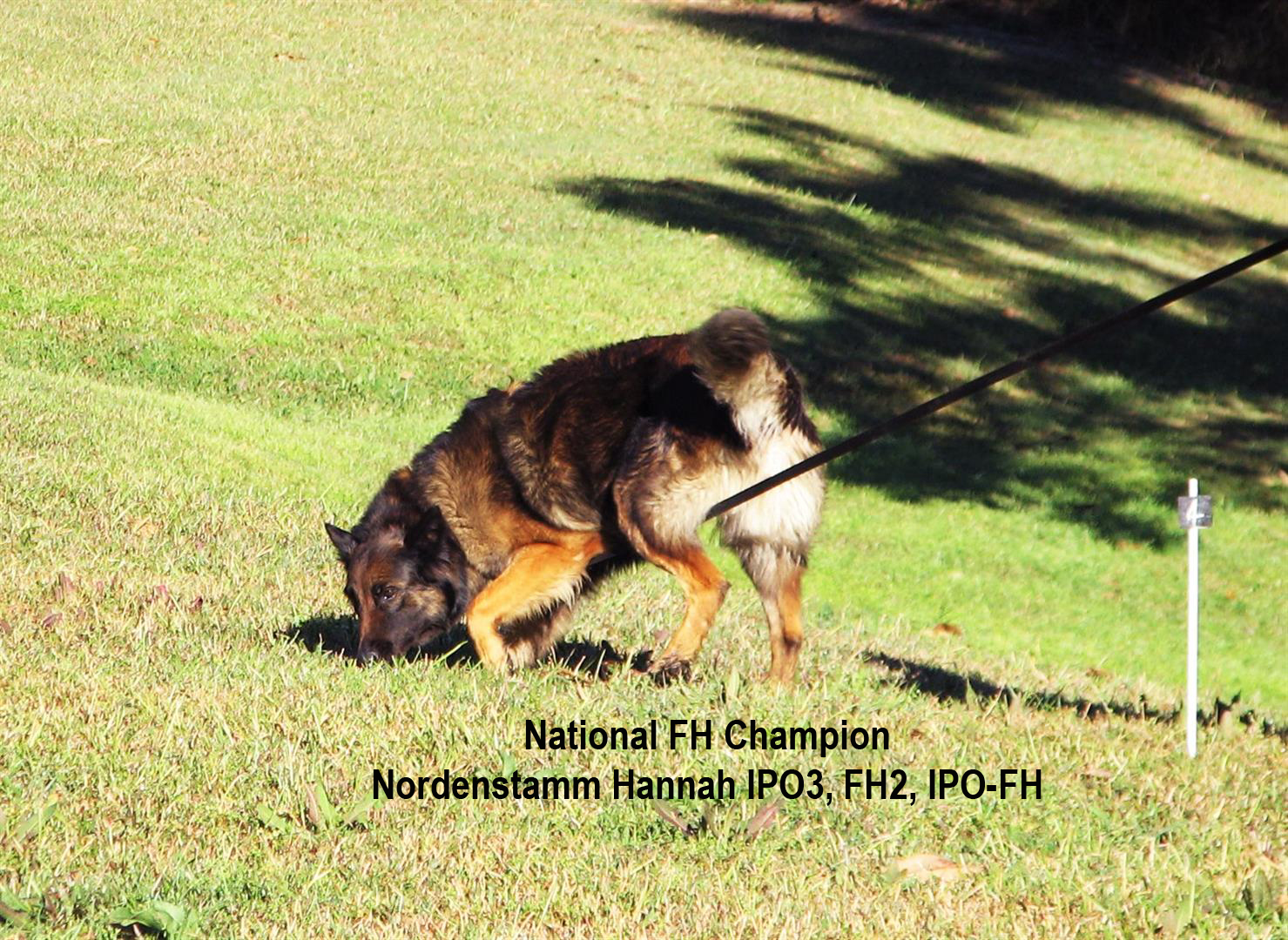 Nordenstamm_Hannah_National_Champion