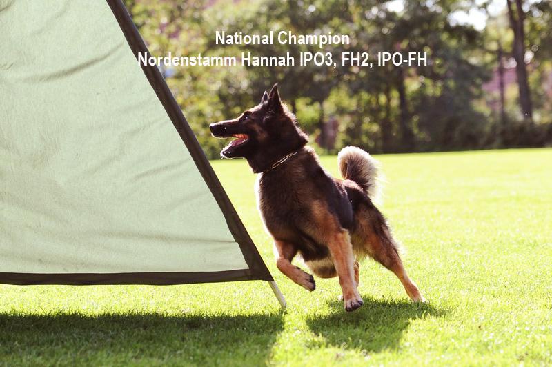 Nordenstamm_Hannah_National_Champion_IPO