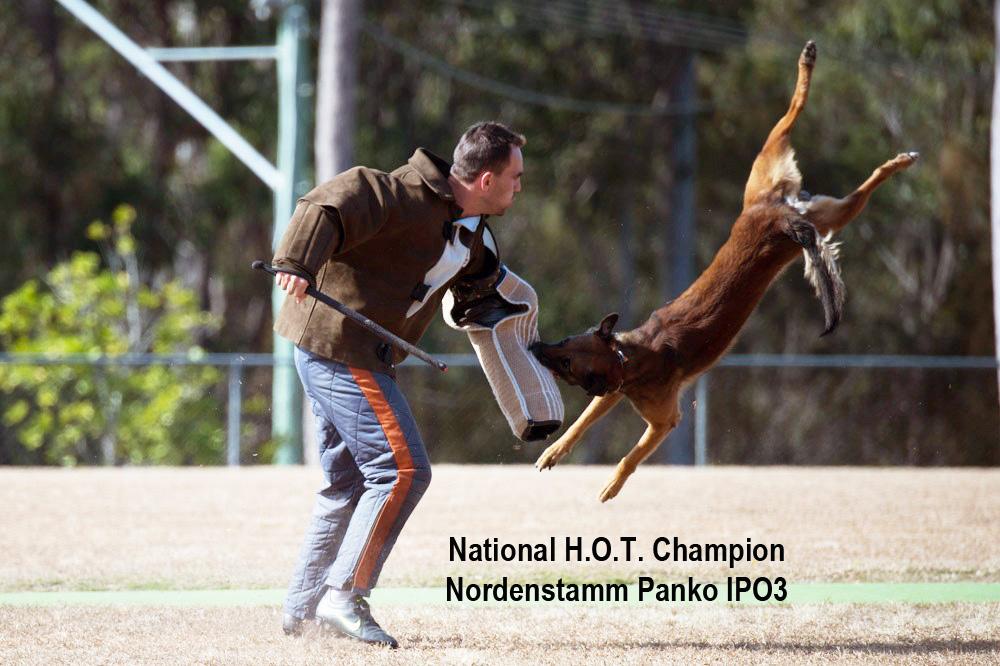 Nordenstamm_Panko_National_Champion_IPO