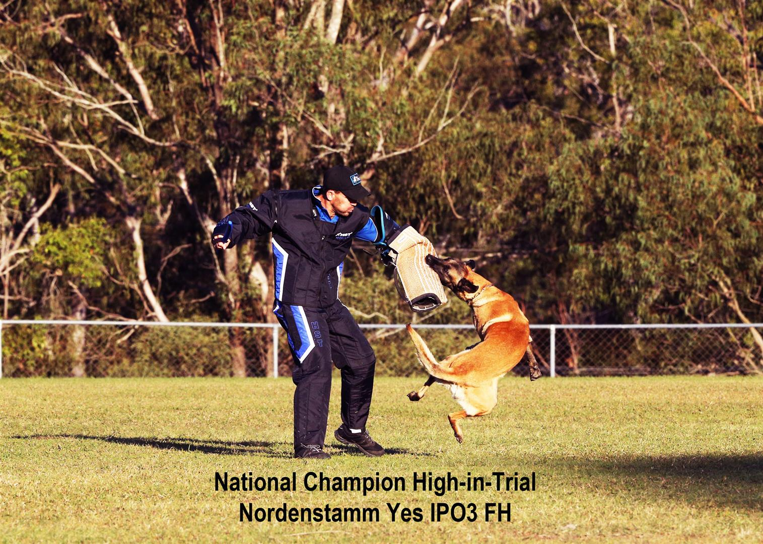Nordenstamm_Yes_IPO_National_Champion