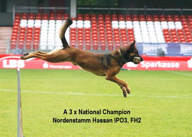 Nordenstamm-Hassan_FMBB_World_Championship