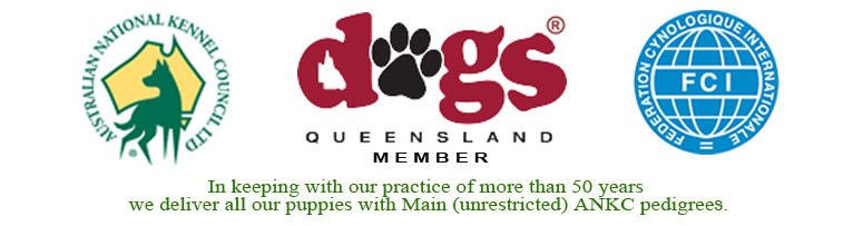 dogs-queensland-logo